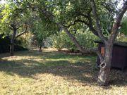 Gartenparzelle mit Holzhaus
