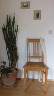 alter stuhl shabby gebraucht kaufen nur 3 st bis 75 g nstiger. Black Bedroom Furniture Sets. Home Design Ideas