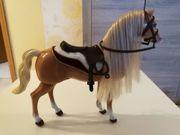Reiter Barbie mit