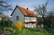 Ferienhaus im Nordelsass -