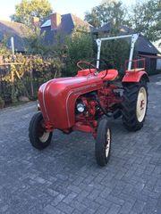 Porsche Diesel Standard Traktor Oldtimer