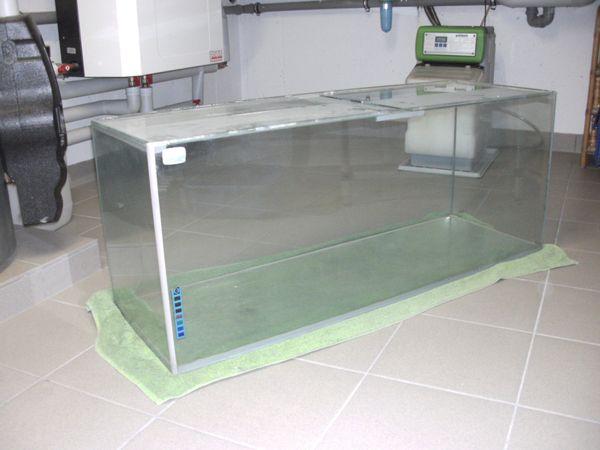 breiter schwarzer kleinanzeigen aquaristik kaufen verkaufen bei deinetierwelt. Black Bedroom Furniture Sets. Home Design Ideas
