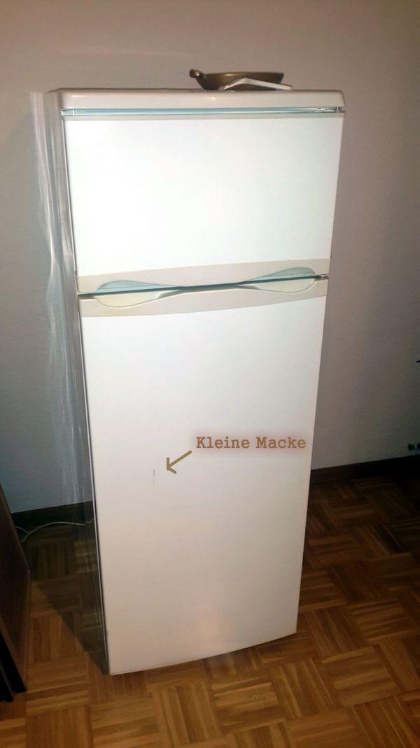 SEG 260 AG Kühlschrank mit