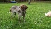 Shila, 2 Jahre