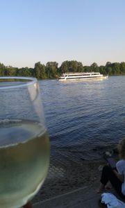 Alleine am Rheingauer