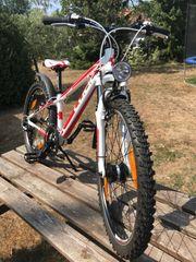 Mountainbike 24er CUBE neuwertig